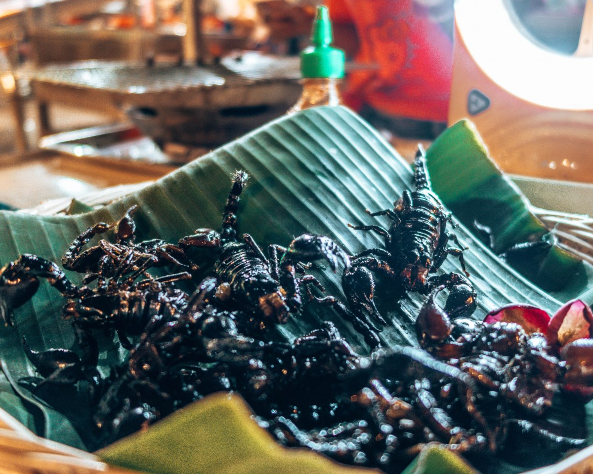 Why eating bugs is the future of food