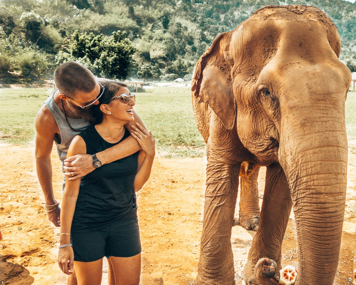 The most ethical place to see elephants inThailand