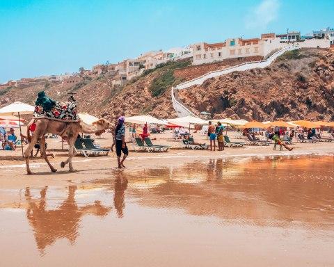 Mirleft beach camel