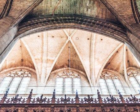 Cathedrale Sainte Marie D'Auch ceiling windows France