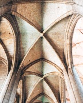 Cathedrale Sainte Marie D'Auch ceilling France