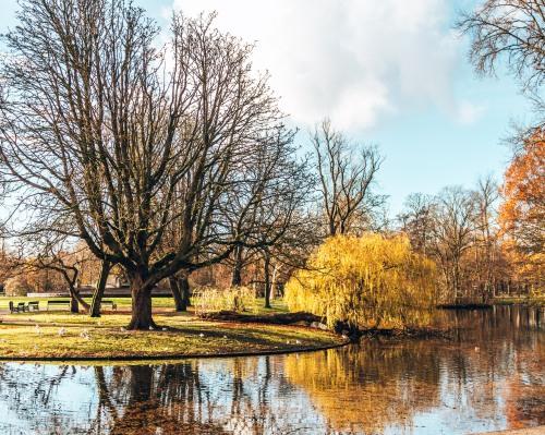 Part of the Vondelpark in Amsterdam, Netherlands