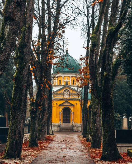A path covered by trees at the Mirogoj cemetery in Zagreb, Croatia