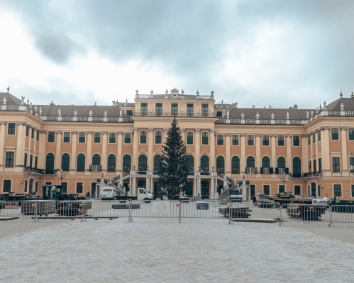 Setting up the Christmas tree in front of the Schönbrunn Palace in Vienna, Austria