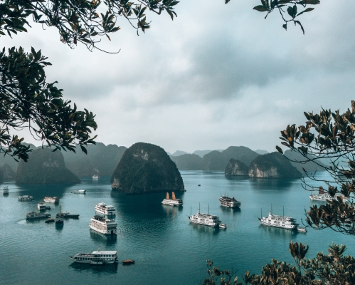 A ton of tour boats in Halong Bay Vietnam